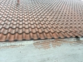 Fly Roof Rain